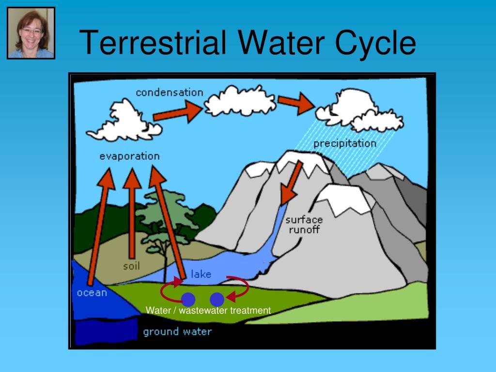 Terrestrial Water Cycle