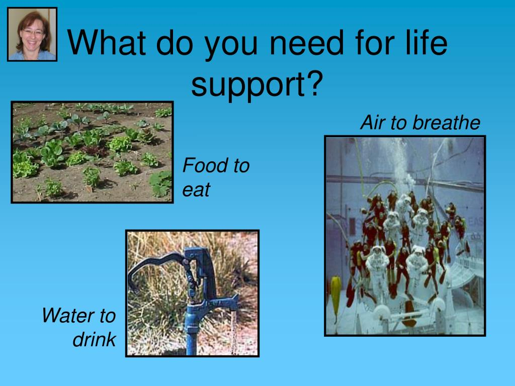 What do you need for life support?