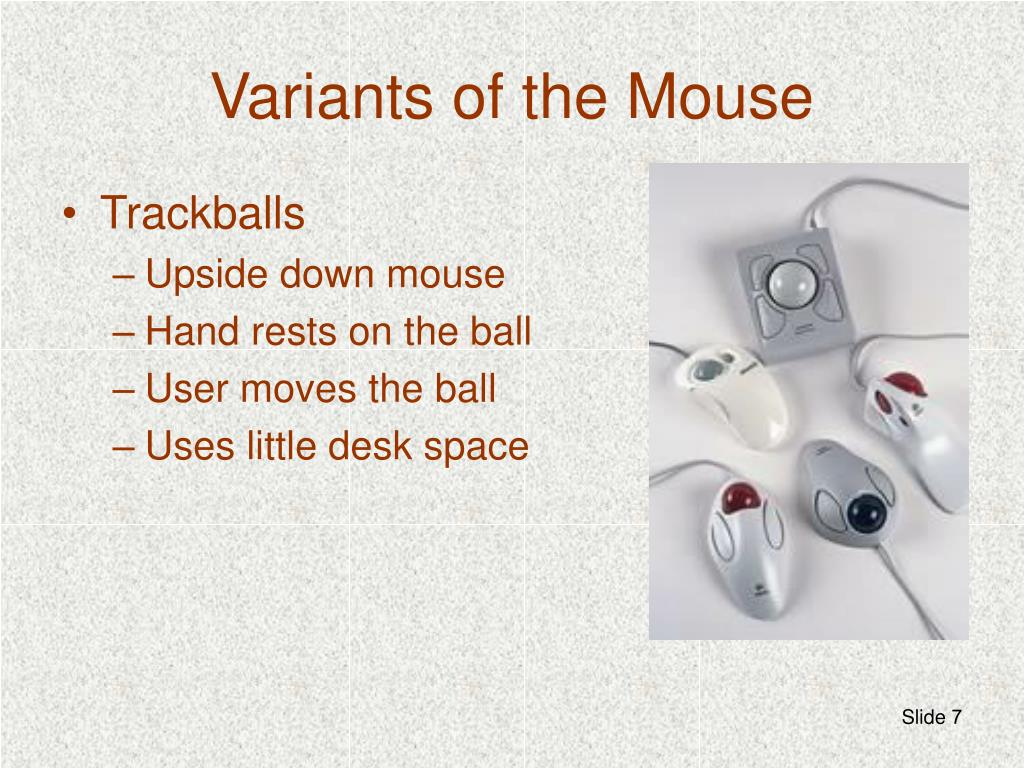 Variants of the Mouse