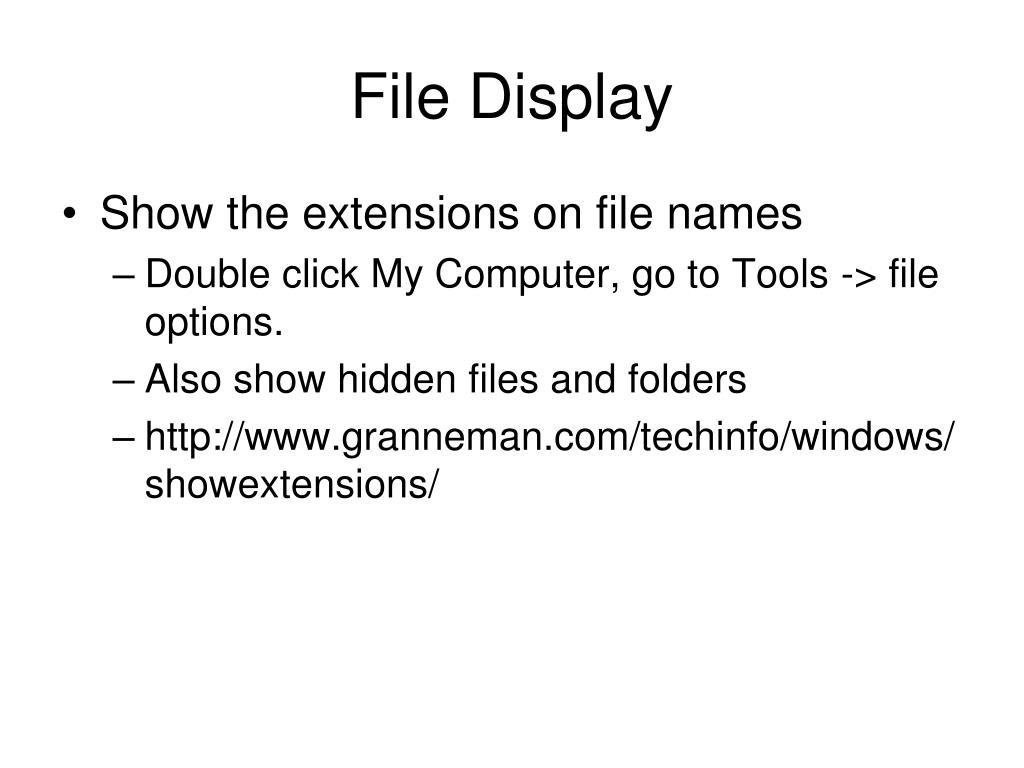 File Display
