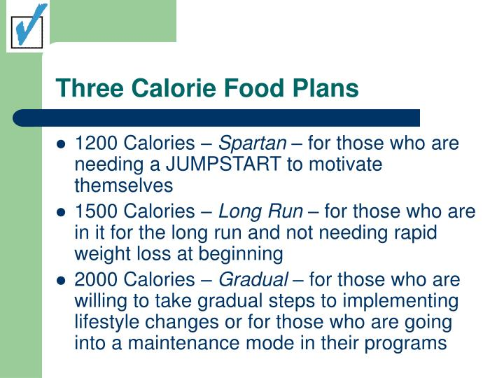 Three calorie food plans
