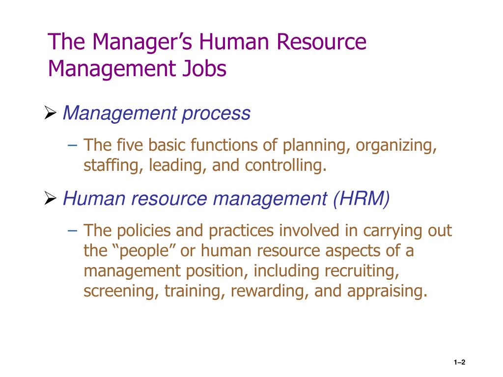 hr policies of apple company ppt helpers community hr strategy at apple make their employees creative and innovative