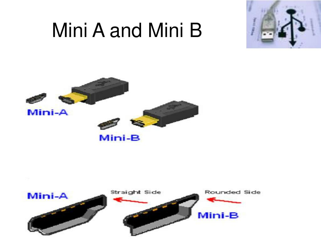Mini A and Mini B
