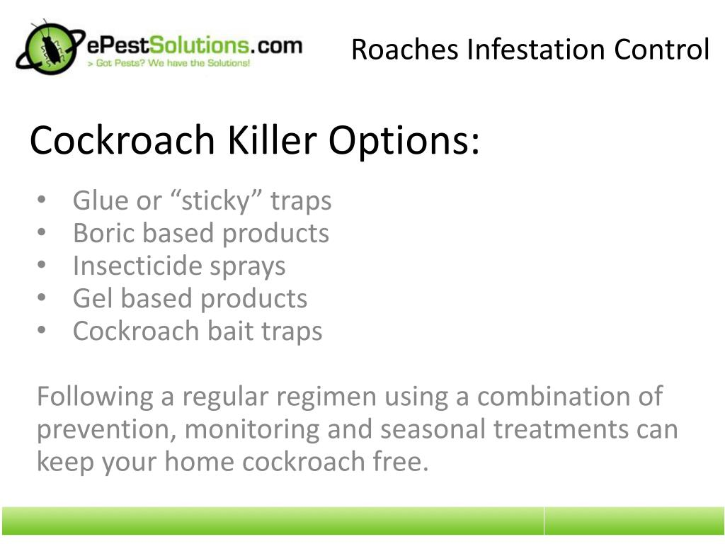 Roaches Infestation Control