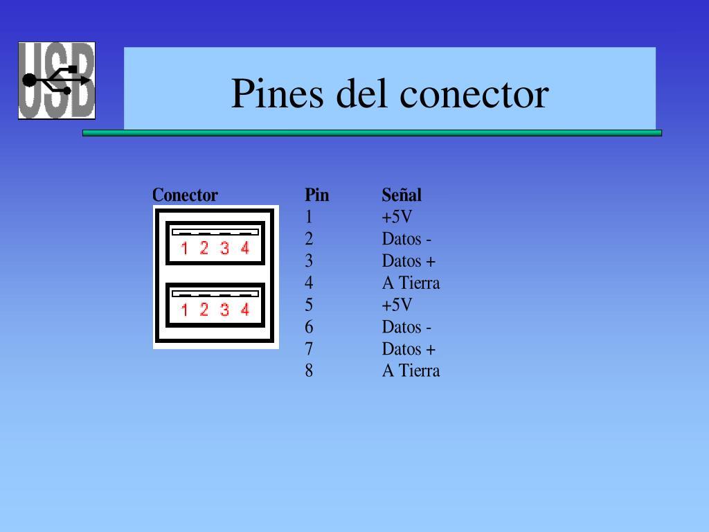 Pines del conector