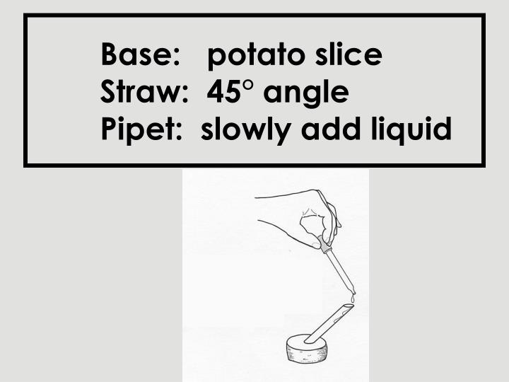 Base potato slice straw 45 angle pipet slowly add liquid l.jpg