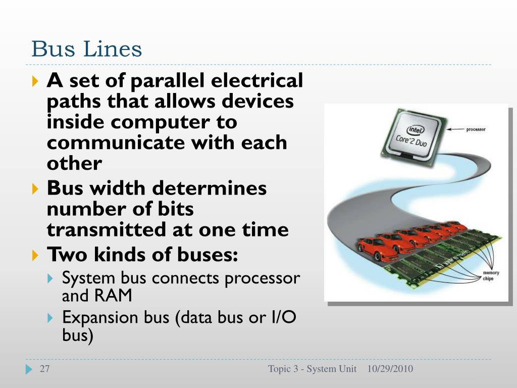 Bus Lines