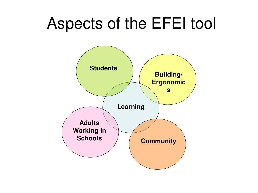 Aspects of the EFEI tool