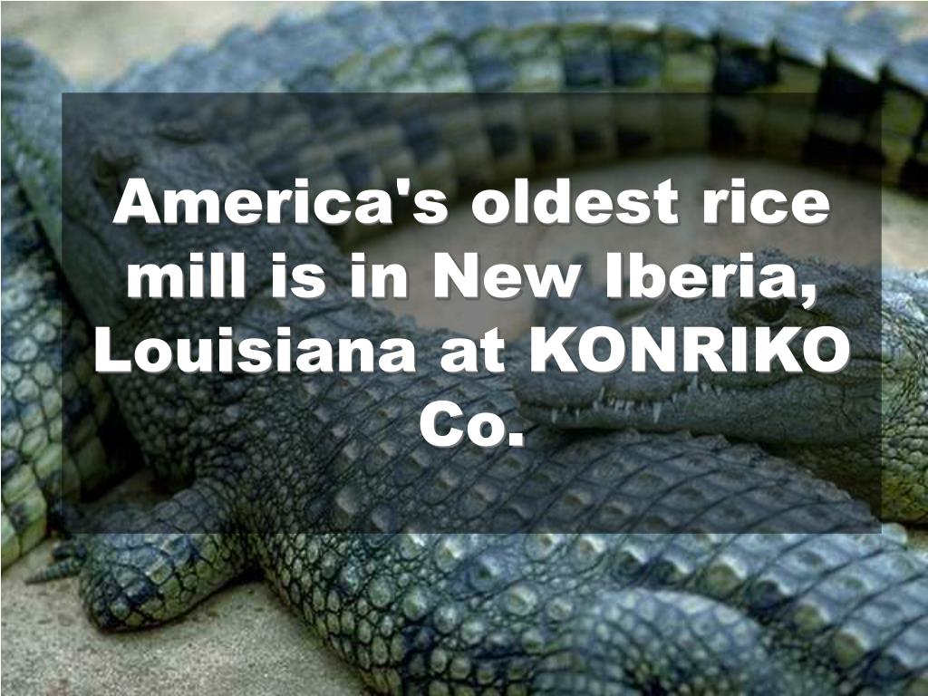 America's oldest rice mill is in New Iberia, Louisiana at KONRIKO Co.
