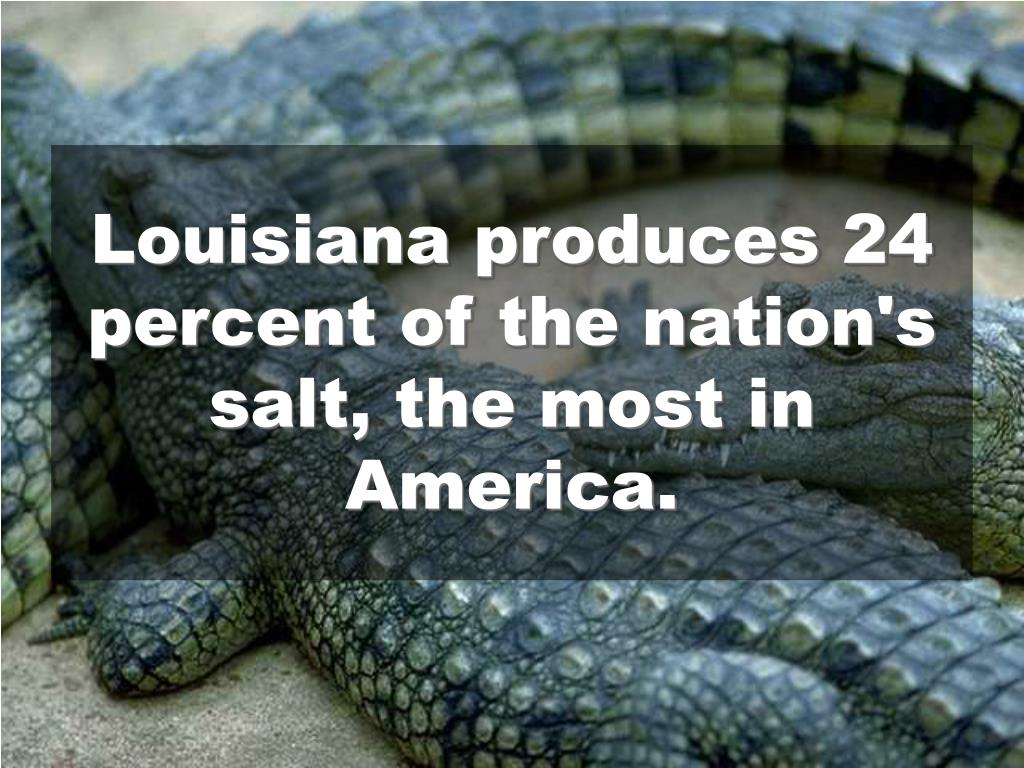 Louisiana produces 24 percent of the nation's salt, the most in America.