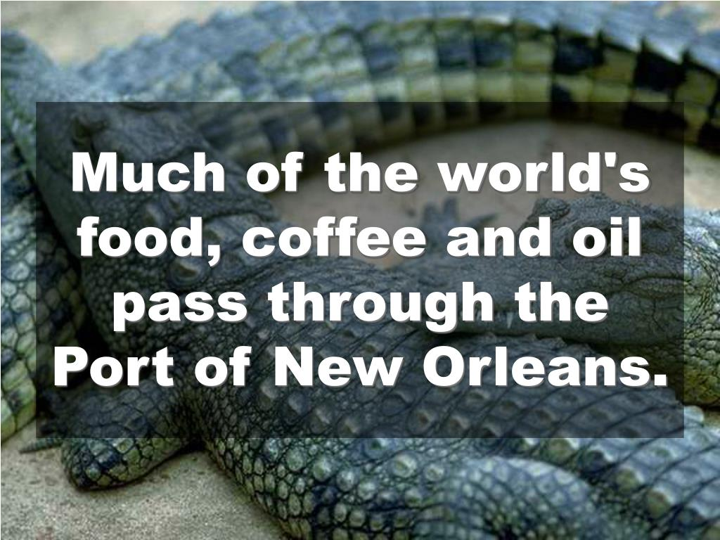 Much of the world's food, coffee and oil pass through the Port of New Orleans.