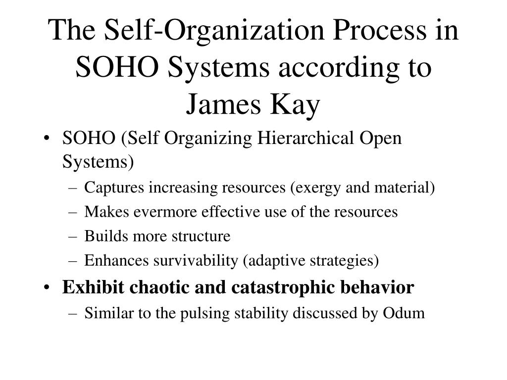 The Self-Organization Process in SOHO Systems according to James Kay