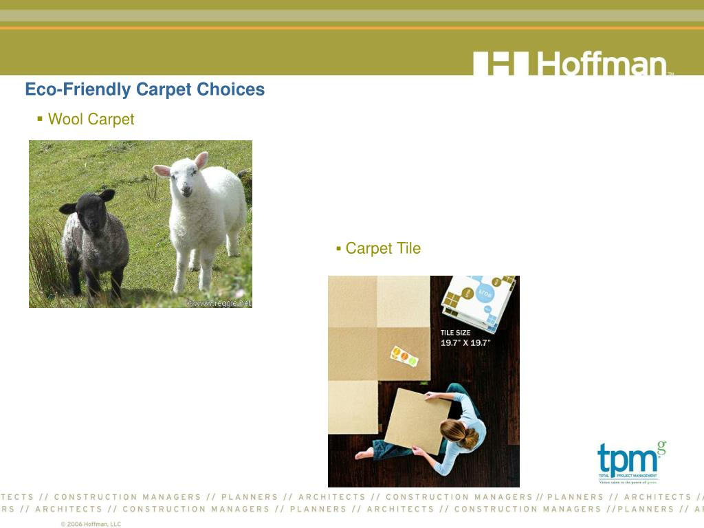 Eco-Friendly Carpet Choices