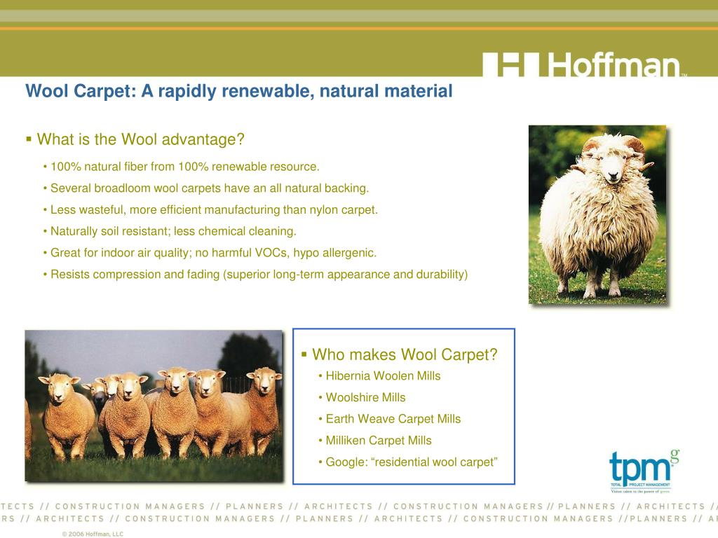 Wool Carpet: A rapidly renewable, natural material