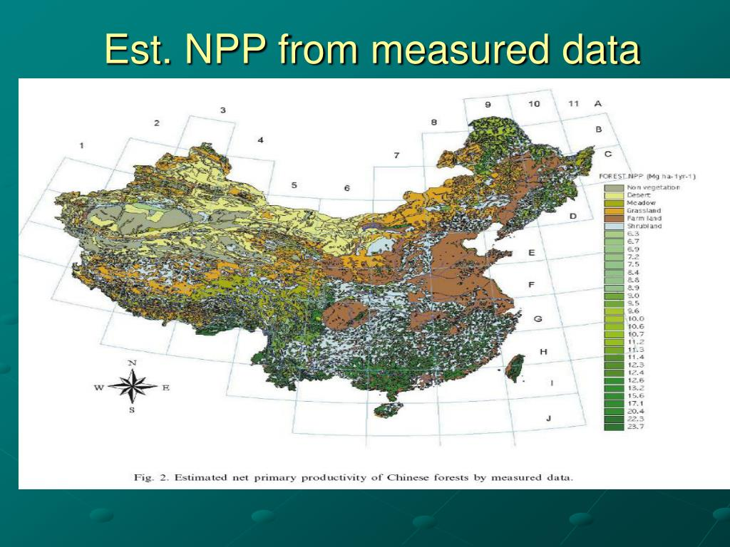 Est. NPP from measured data