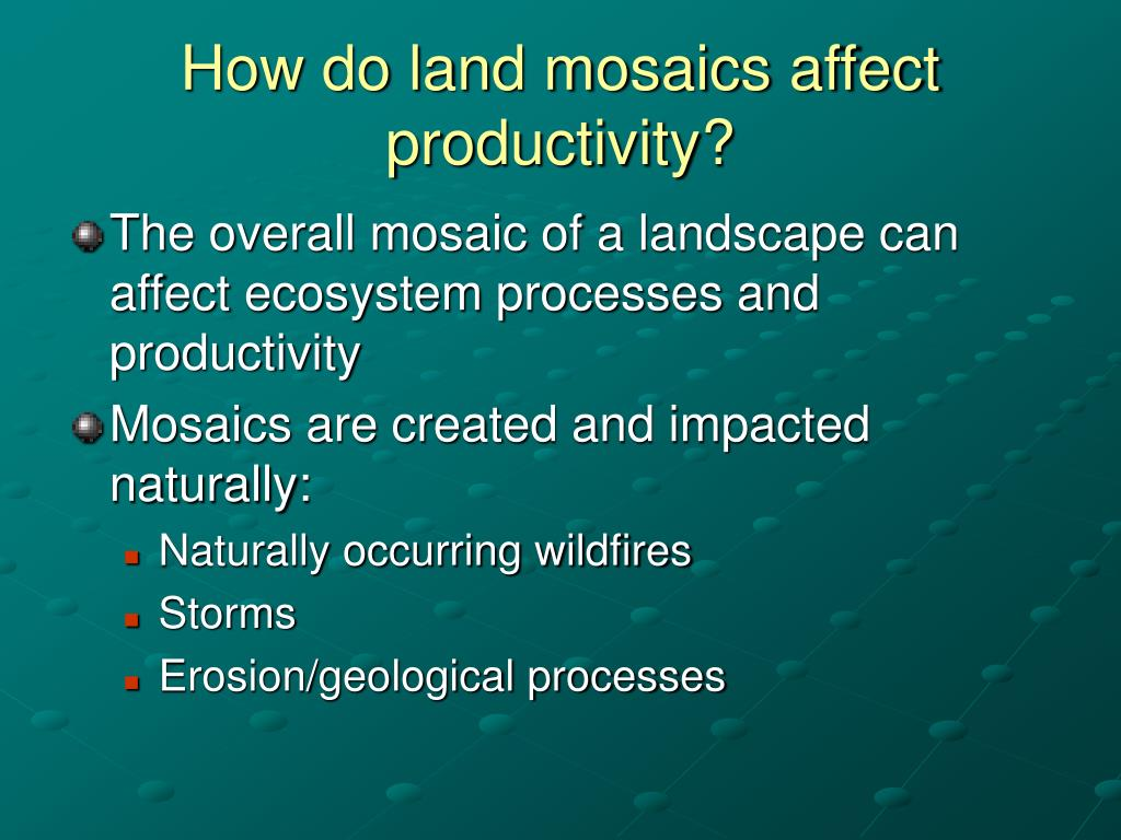 How do land mosaics affect productivity?