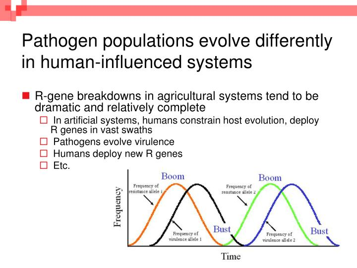 Pathogen populations evolve differently in human influenced systems