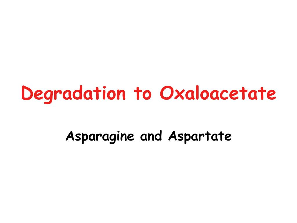 Degradation to Oxaloacetate
