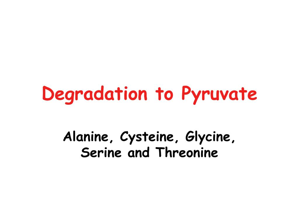 Degradation to Pyruvate