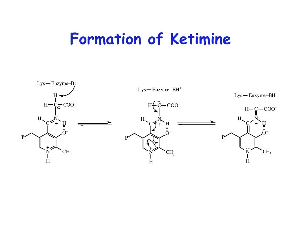 Formation of Ketimine