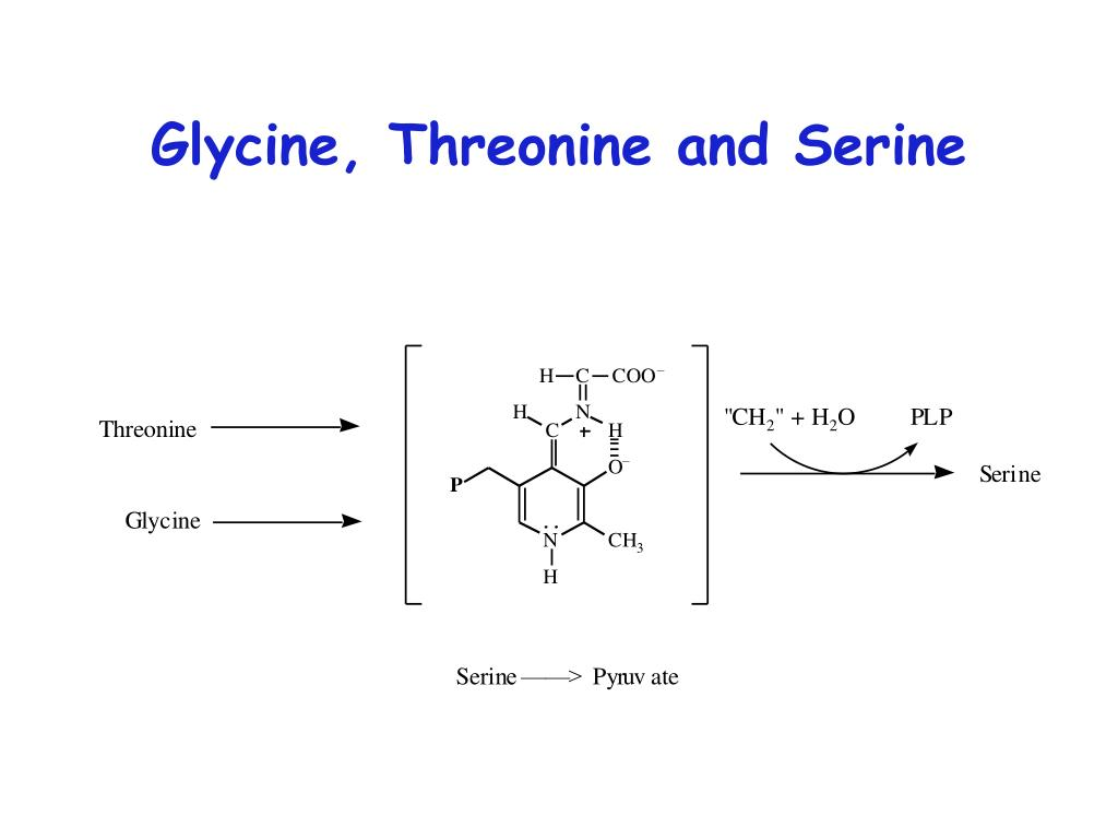 Glycine, Threonine and Serine