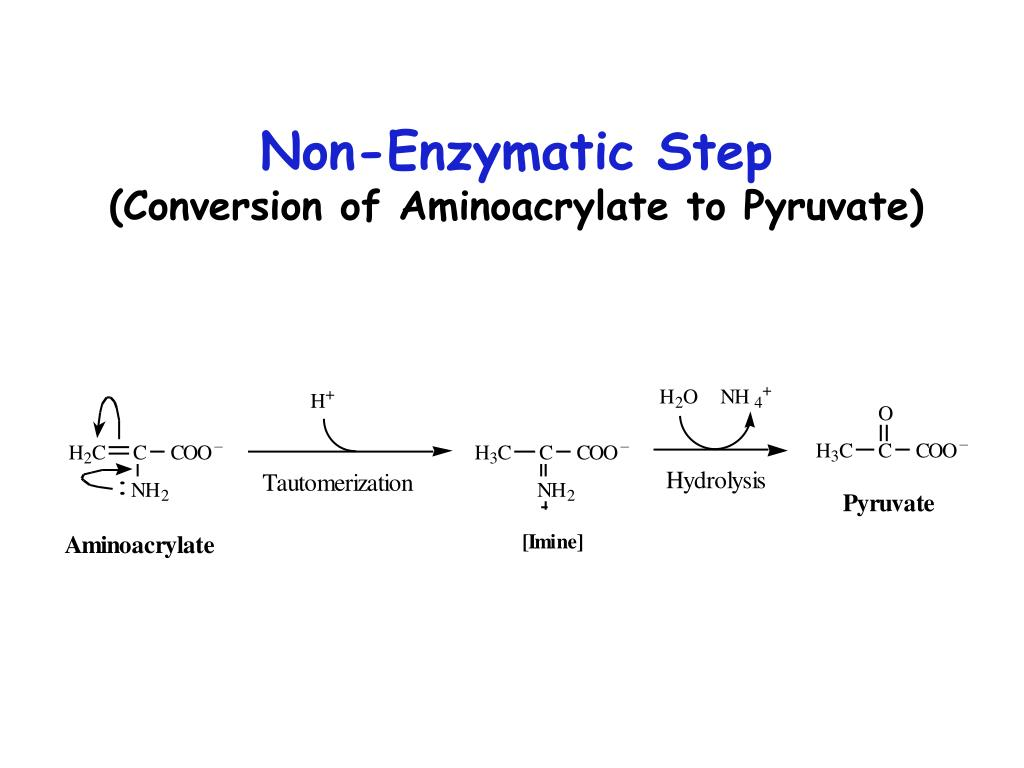 Non-Enzymatic Step