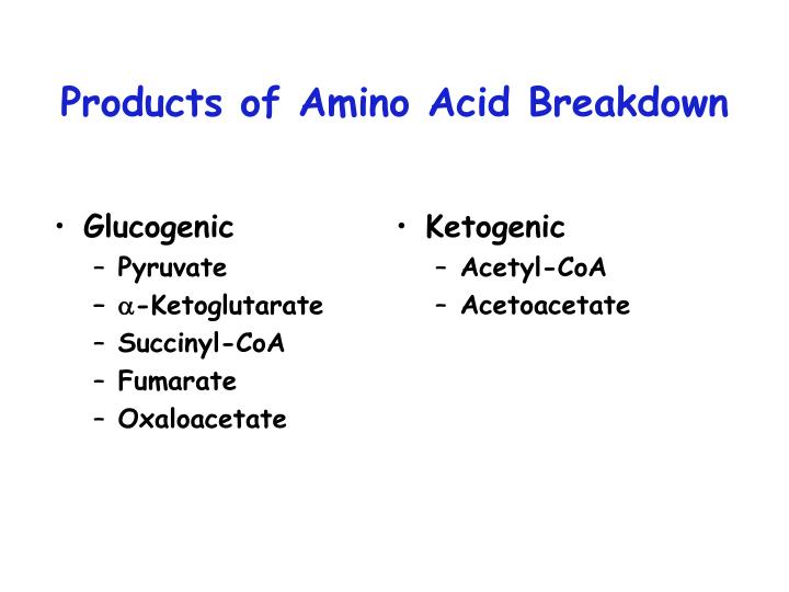 Products of amino acid breakdown