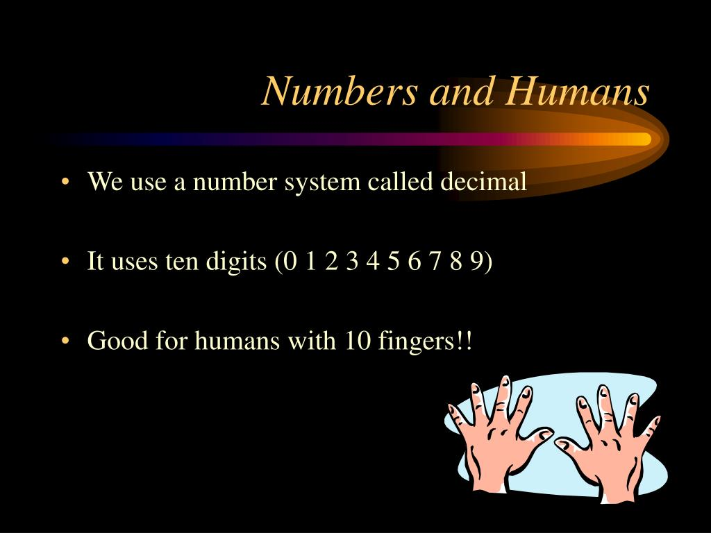 Numbers and Humans