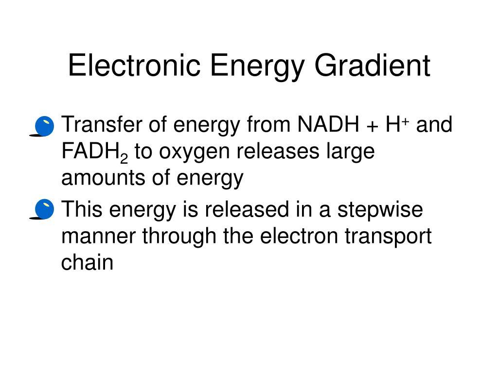 Electronic Energy Gradient