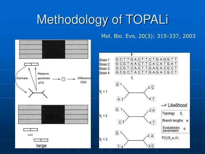 Methodology of TOPALi