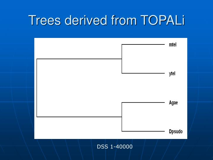 Trees derived from TOPALi