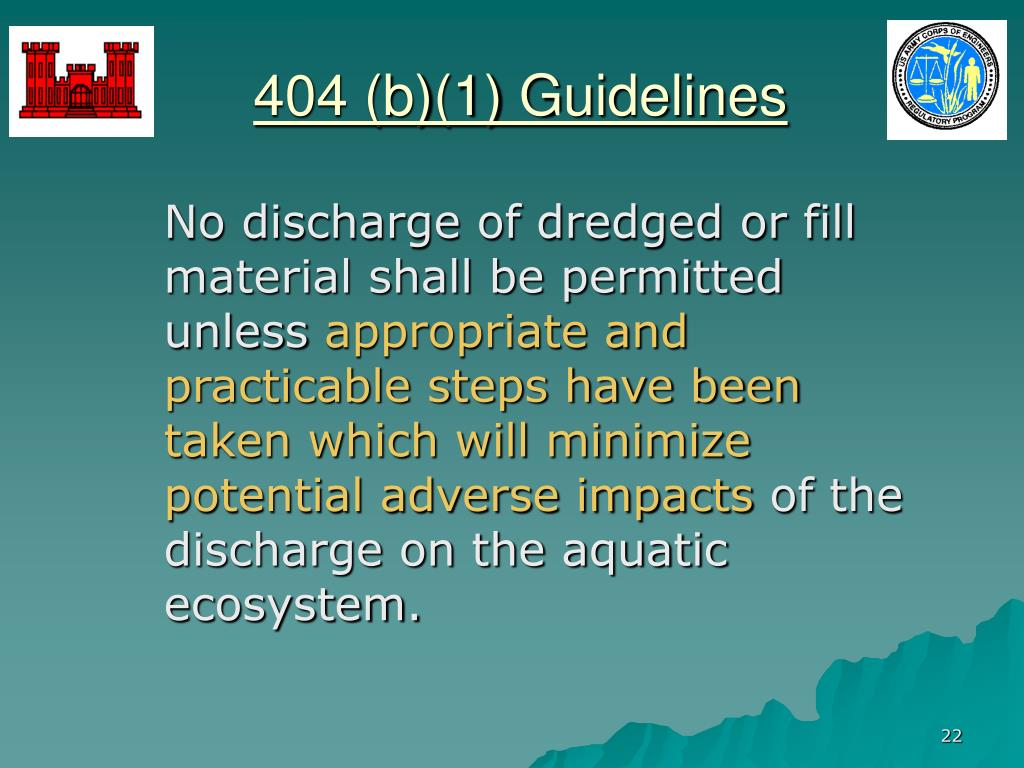 404 (b)(1) Guidelines