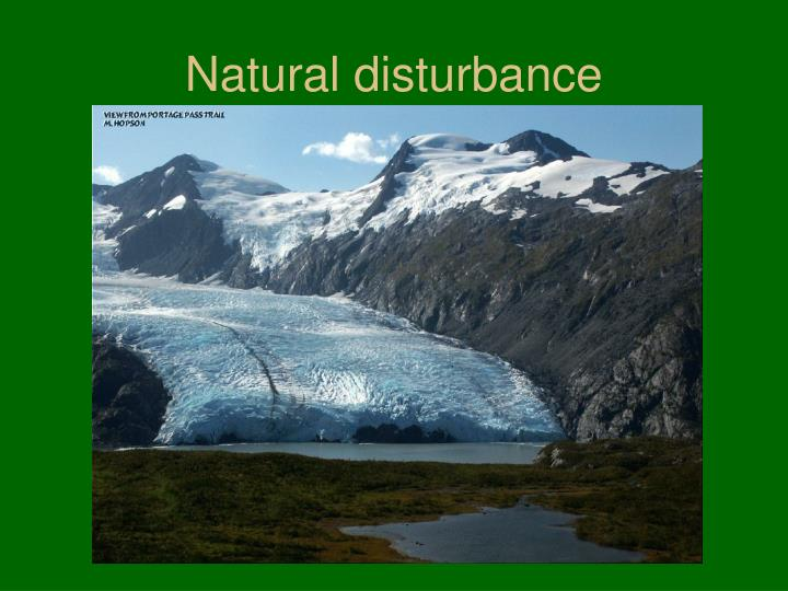Natural disturbance