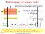 partonic energy loss in dense matter