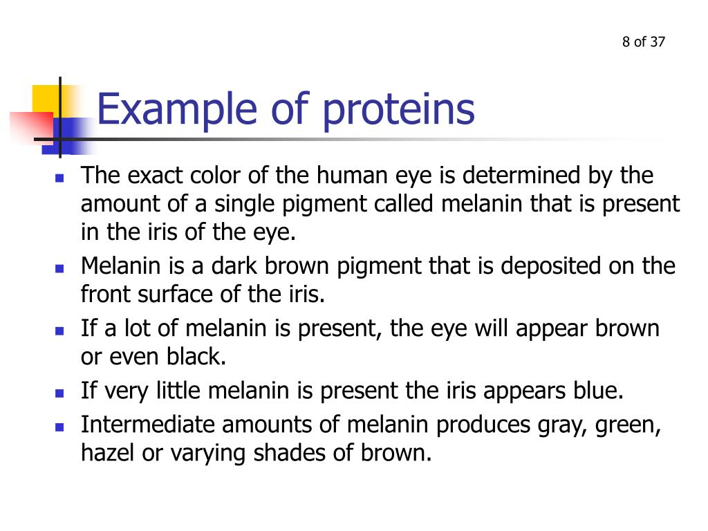 Example of proteins