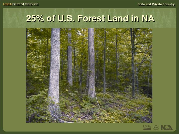 25% of U.S. Forest Land in NA