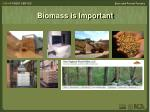 biomass is important1