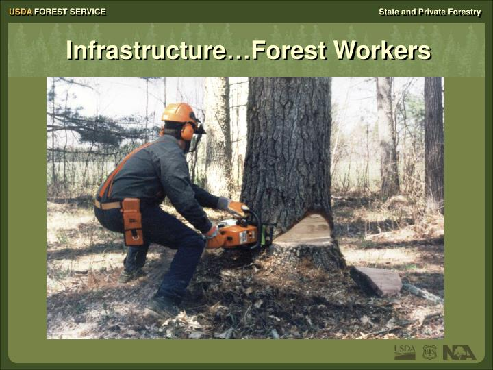 Infrastructure…Forest Workers