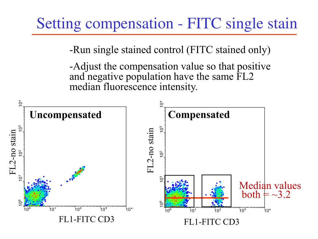 Setting compensation - FITC single stain