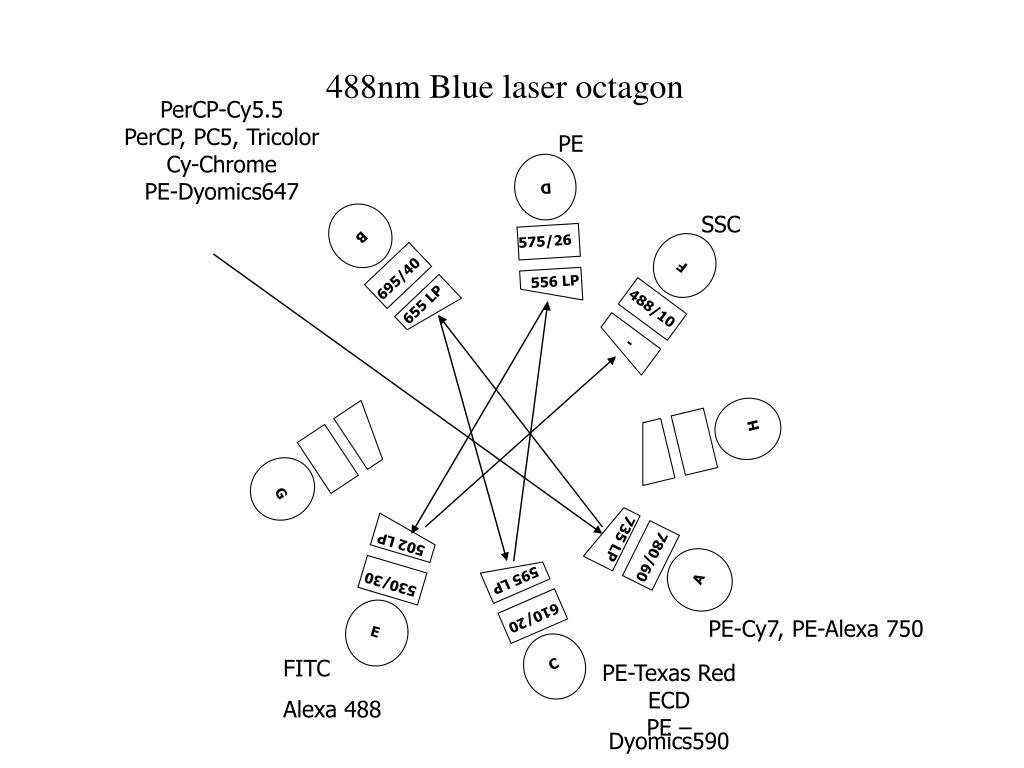 488nm Blue laser octagon