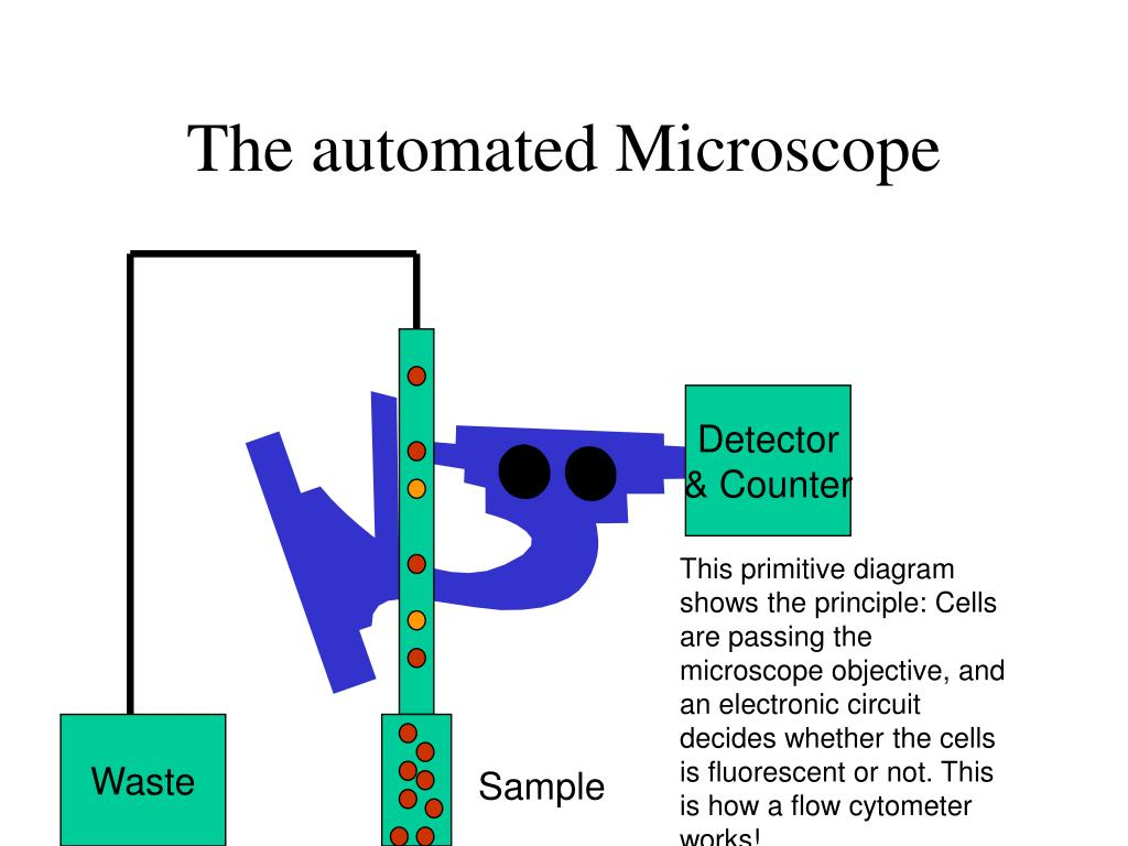 The automated Microscope