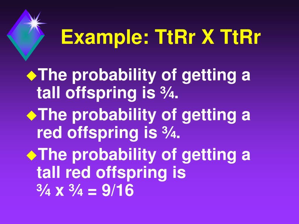 Example: TtRr X TtRr