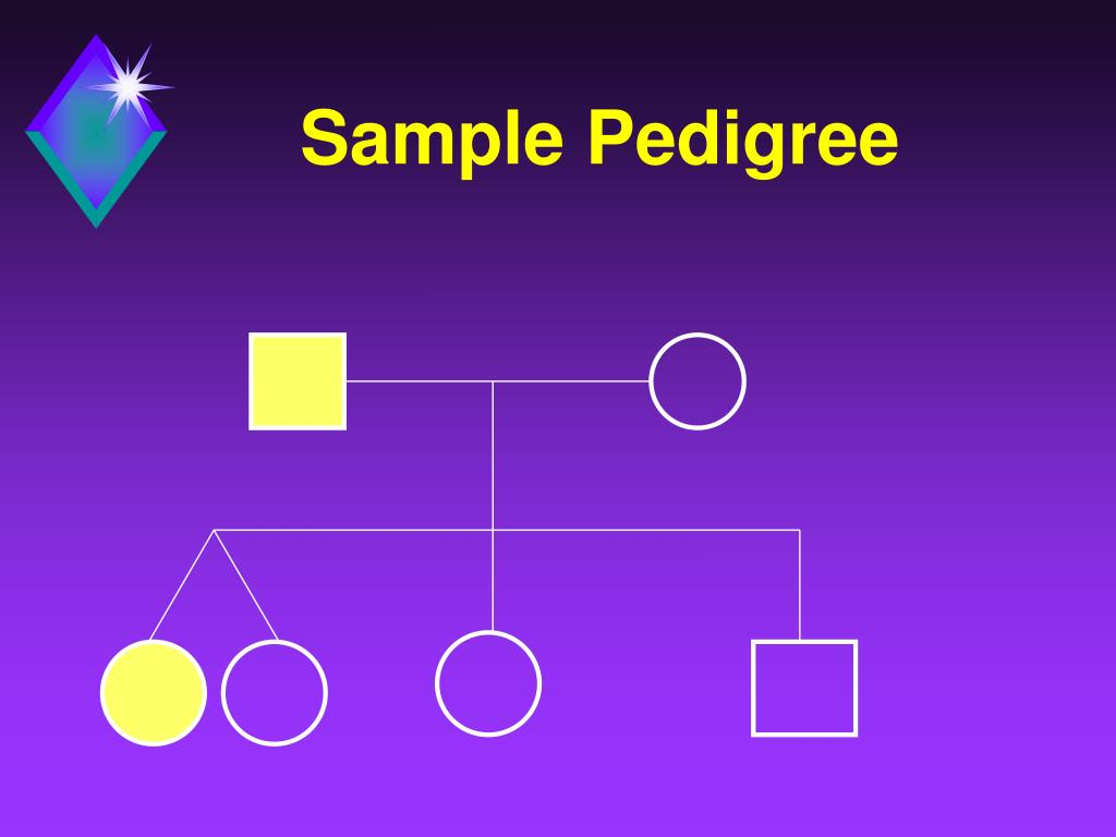 Sample Pedigree