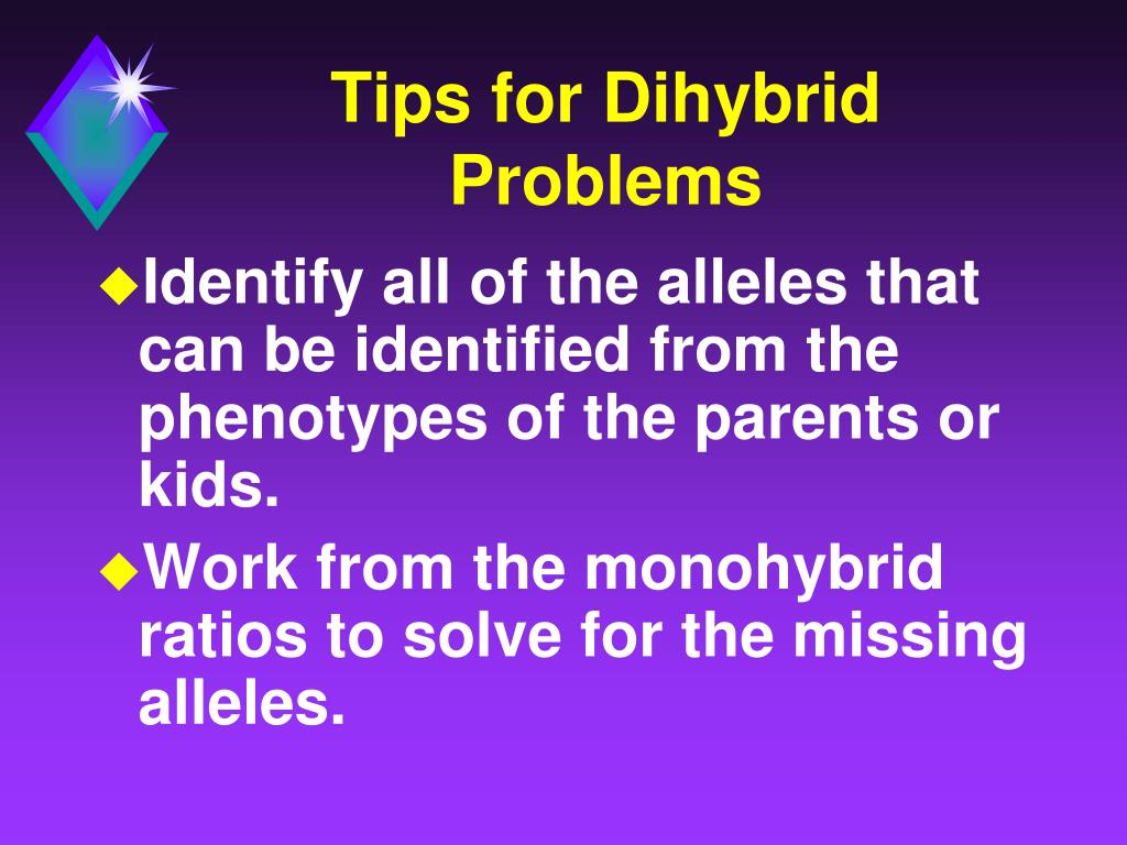 Tips for Dihybrid Problems