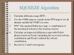 squeeze algorithm