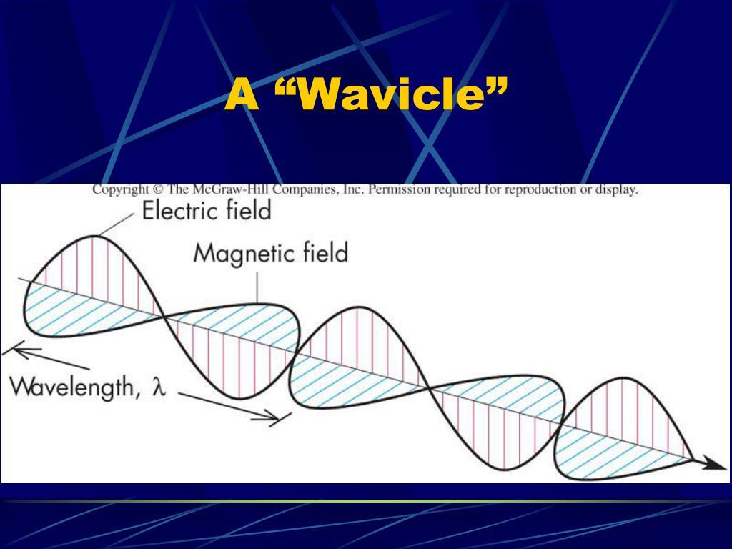 """A """"Wavicle"""""""