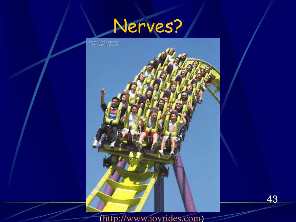 Nerves?