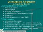 developmental progression 2 knowledge skills