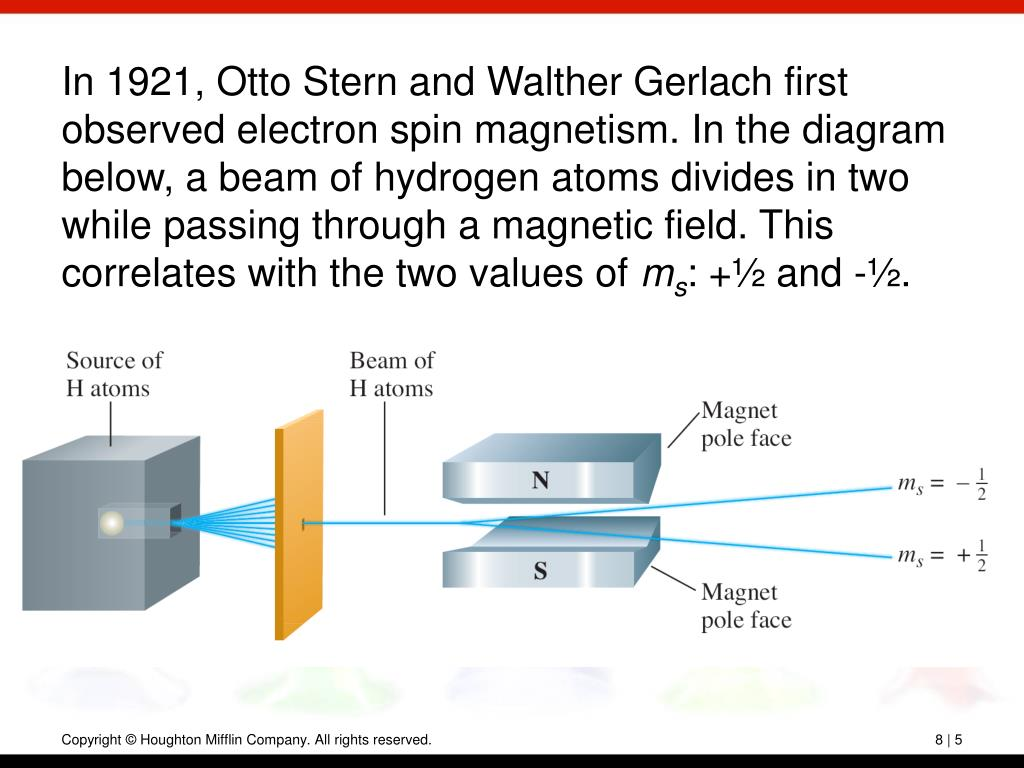 In 1921, Otto Stern and Walther Gerlach first observed electron spin magnetism. In the diagram below, a beam of hydrogen atoms divides in two while passing through a magnetic field. This correlates with the two values of