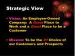 strategic view